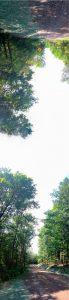 "TIm Larkin • <em>Summer</em> • Archival pigment print • 16""×48"" • $150.00"