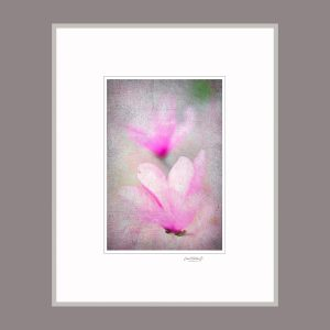 "David Watkins Jr • <em>Magnolia Fantasy</em> • Archival pigment print • 16""×20"" • $175.00"