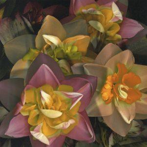 "Stan Bowman • <em>Daffodils</em> • Paper print on foam core  • 8""×10"" • $35.00<span class=""sold""></span>"
