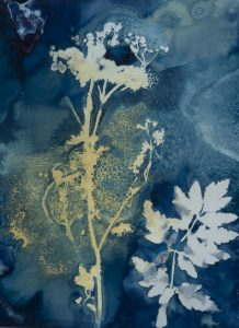 """Christine Chin • <em>Invasive Species Cyanotypes: Wild Parsnip (Pastinaca sativa)</em> • Cyanotype photogram • 11""""×15"""" • $70.00<a class=""""purchase"""" href=""""https://state-of-the-art-gallery.square.site/product/christine-chin-invasive-species-cyanotypes-wild-parsnip-pastinaca-sativa-/593"""" target=""""_blank"""">Buy</a>"""