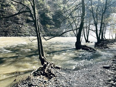 "Eva M. Capobianco • <em>High Water at Ithaca Falls</em> • Digital photo on aluminum plate • 8½""×11"" • $75.00"