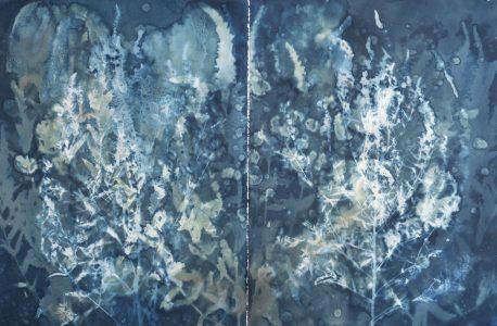 "Christine Chin • <em>Invasive Species Cyanotypes: Purple Loosestrife: Lythrum salicaria</em> • Cyanotype photogram • 44""×30"" • $750.00<span class=""sold""></span>"