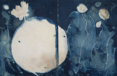 "Christine Chin • <em>Invasive Species Cyanotypes: American Lotus: Nelumbo lutea</em> • Cyanotype photogram • 44""×30"" • $750.00<span class=""sold""></span>"