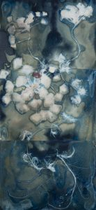 """Christine Chin • <em>Invasive Species Cyanotype: European Water Chestnut (Trapa natans)</em> • Cyanotype • 15""""×33"""" • $600.00<a class=""""purchase"""" href=""""https://state-of-the-art-gallery.square.site/product/christine-chin-invasive-species-cyanotype-european-water-chestnut-trapa-natans-/632"""" target=""""_blank"""">Buy</a>"""