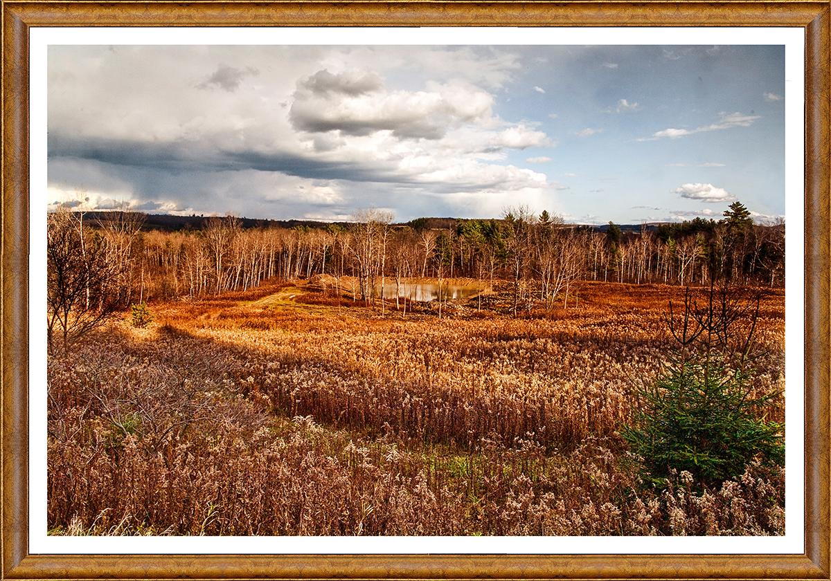 Stan Bowman • <em>Route 38 Pond</em> • NFS